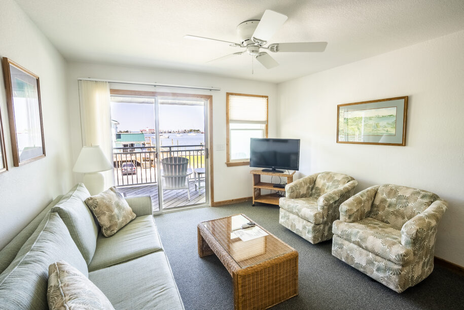 suite 208 living room with view